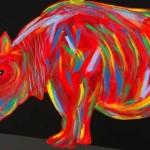 rhino-900x356